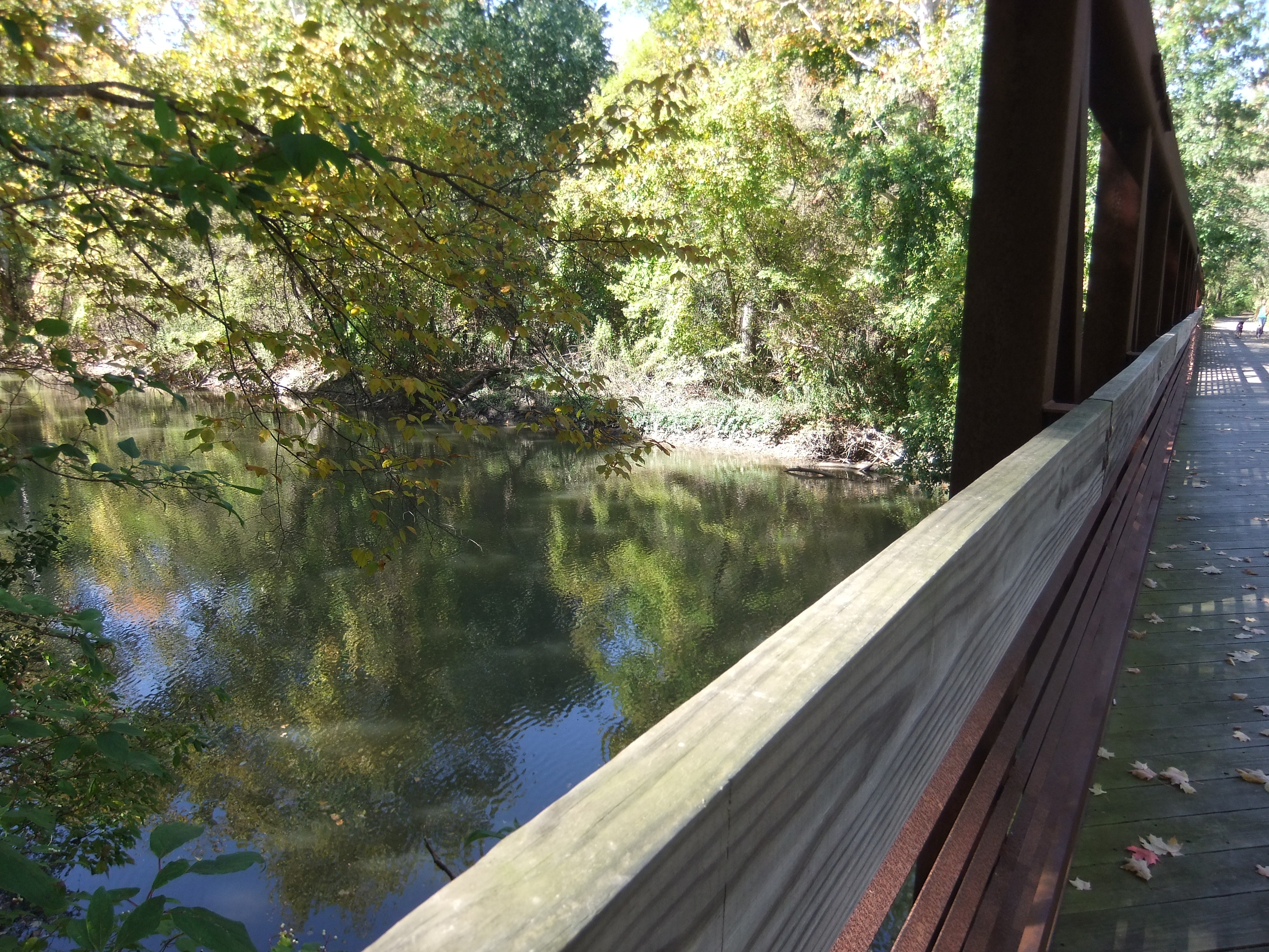 Photo of the rouge river from the bridge