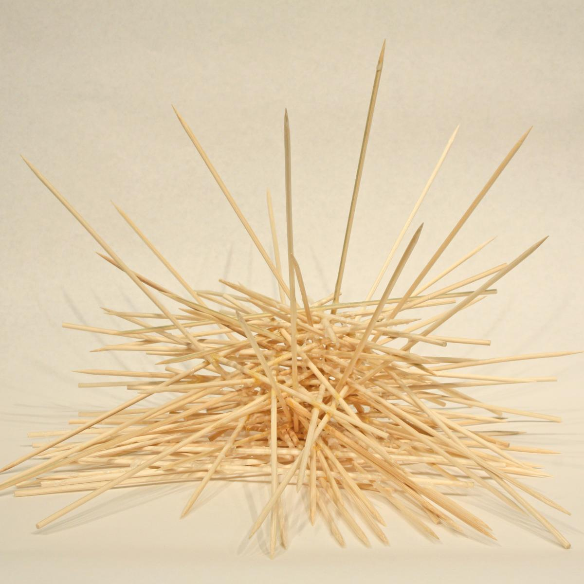 Wooden sticks stuck together forming a cluster.