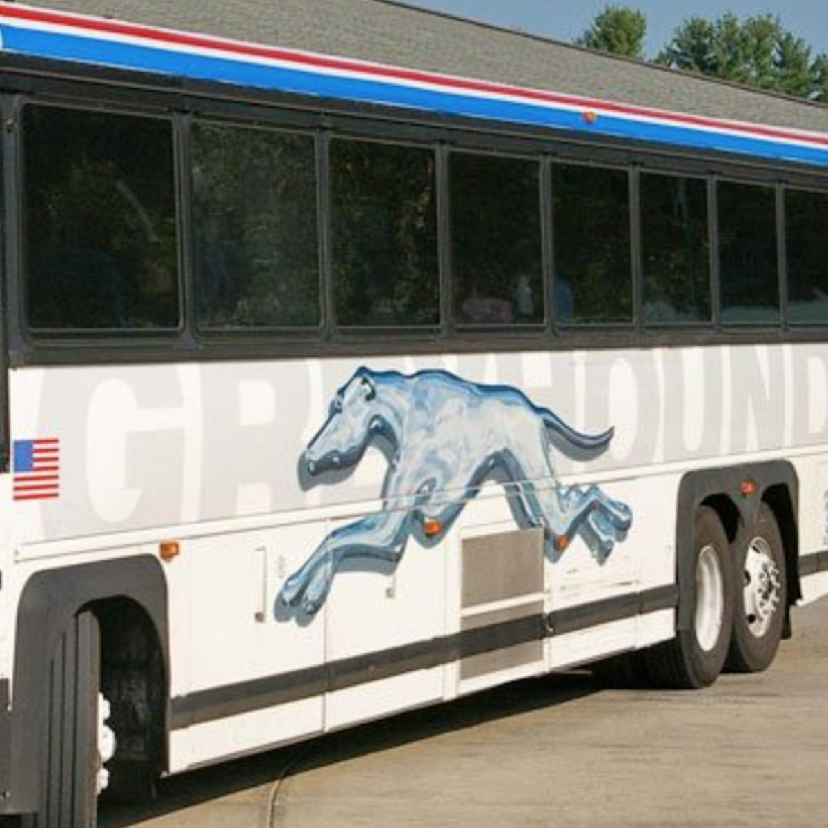 Close up photo of Greyhound bus